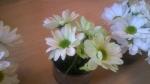 barwienie kwiatów przedszkole